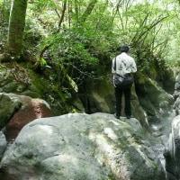赤淵川 牛ヶ淵の滝 FILE:1