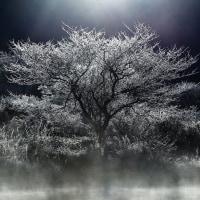 161015赤城山 覚満淵 霜降る朝