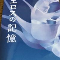 桜木紫乃 『影のない街』前編