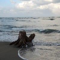 なんとなく 海へ・・・