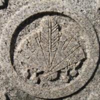 小野木姓の紋