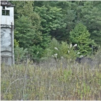 秋色探訪・・・旧奔別炭鉱立坑櫓。