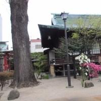 博多桜の社寺城跡めぐり