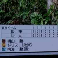 阪神の横山・巨人倒す?