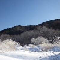 17年1/18~開田高原ー18.1℃~霧氷~①