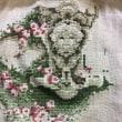 ミラビリア The Rose of Sharon 35日目