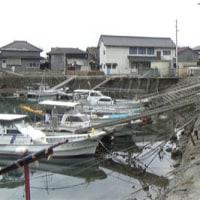愛媛県青島の島旅 8回目