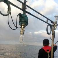 10月20日ボートエギングの釣果