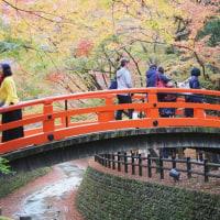 2016 晩秋の京都を歩く(11/29~12/1)その1