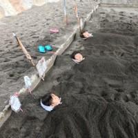 指宿  砂蒸し温泉