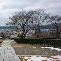 京都市-綾部市-向日市