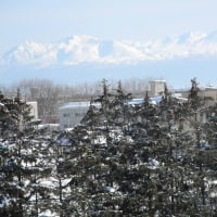 北の名峰大雪山
