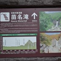 紅葉便り「妙高・苗名滝」