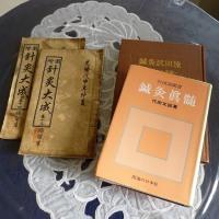 壽堂日記28年10月3日「めまいの鍼灸治療。」