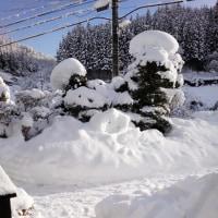 降り続いていた雪もやっと止んだ!