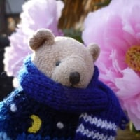 春を待つ寒牡丹