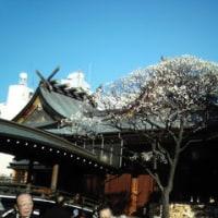 湯島天神で梅を見てから演説会へ