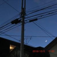もう上弦の月!半月ですよ~