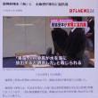 国会閉会中審査