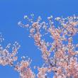 【NO.1193】3月のイベント情報、更新しました☆☆ (3月28日更新)