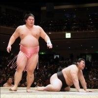 「宇良「気持ちで相撲取った」小柳とのホープ対決制す」とのニュースっす。