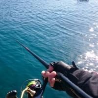 17.2.21(火) チヌ釣り