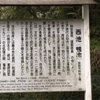 須濱神社〜祝田神社へ☆