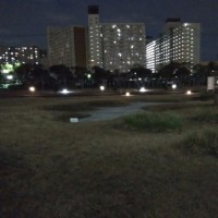 夜のエントランスロード