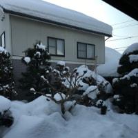 1/21(土)  雪。