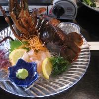 日間賀島に行ってきました