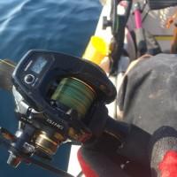 2017年釣り初め