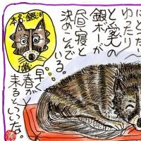 『銀ボーの昼寝・・』
