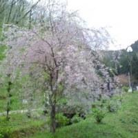 京都の思い出・鍾乳洞