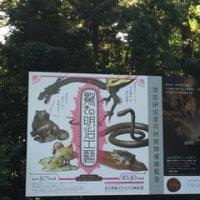 上野で、はしご (^_^*)