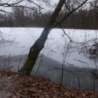第2368回 Nature Ice skate link on Frozen pond