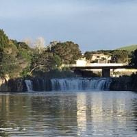 イルチブレインヨガのニューシーランド瞑想プログラムをご紹介します