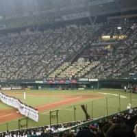 2016.9.28 ファイターズ最終戦