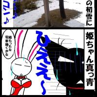 初雪と姫ちゃん