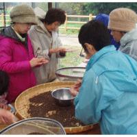 大豆と蕎の実の選別作業