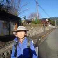刈寄山西尾根の滑入(ナメリ)沢対岸尾根(仮称)を登路に、刈寄山~今熊山と歩きました 1/2 ――― まさかロープを使うことになるとは!