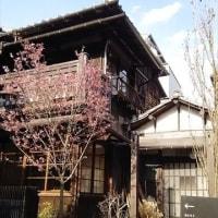 『上野桜木あたり』で・・・