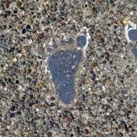 ◎本日の足跡その1(裸足で両足)