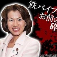秘書に暴言&暴行&脅迫!? 自民党 豊田真由子 議員 音声データ流出 ニュース 報道  週間新潮