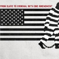 13th -憲法修正第13条- 【感想】