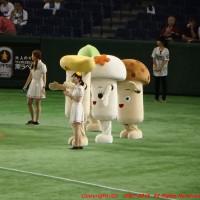 8/30 日本ハムvs東北楽天(東京ドーム)レジェンドシリーズ観戦記