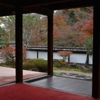 奈良 秋色 2016