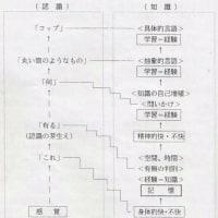 心の方程式 物質から心へ(7)