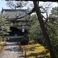 第135回古都旅歩き 藤森神社、海宝寺、伏見城
