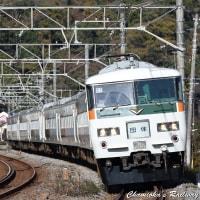 【鉄道写真】我孫子・鎌倉間に運転された185系10両編成の団体臨時列車