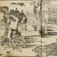 『私家本 椿説弓張月』  平岩弓枝  新潮社